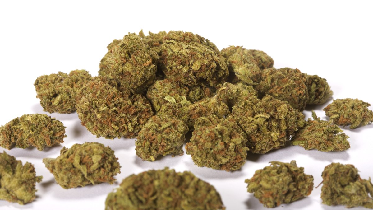 Choose the best supplier to buy Legal Marijuana (Erba Legale)